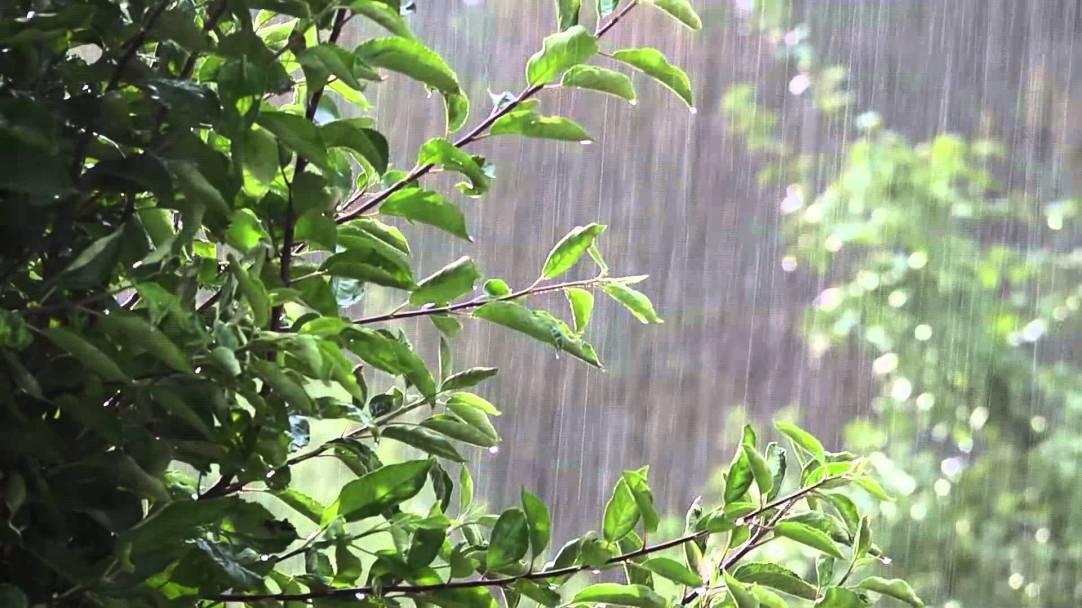 rain heavy
