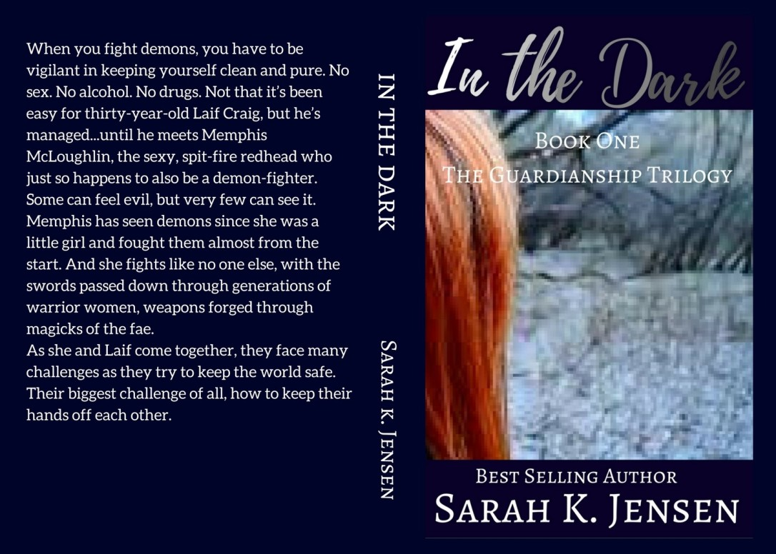 IN THE DARK cover 1